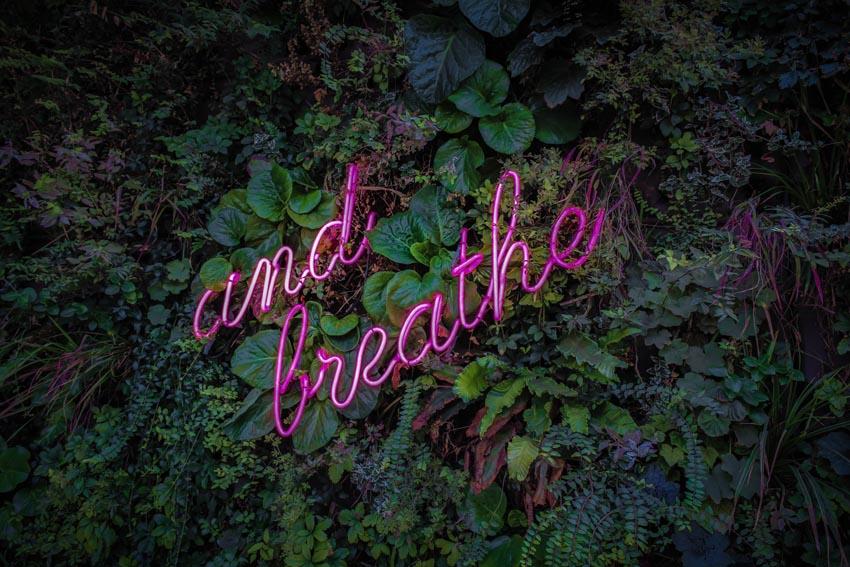 Holotropes Atmen vom 9. bis 10. November 2019